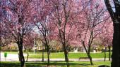 vista previa del artículo Parques y Jardines en León