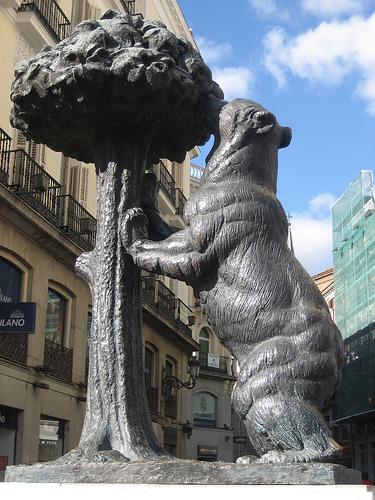 oso y madroño