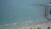 vista previa del artículo Conoce la Alicante Tourist Card
