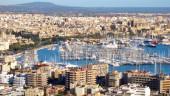 vista previa del artículo Mallorca, el mejor destino para tus vacaciones