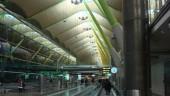 vista previa del artículo Descenso moderado de pasajeros en los aeropuertos Aena