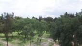 vista previa del artículo Vacaciones en los bosques de Aragón durante el otoño