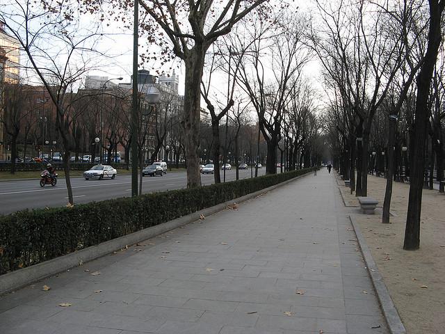 Paseo en Madrid