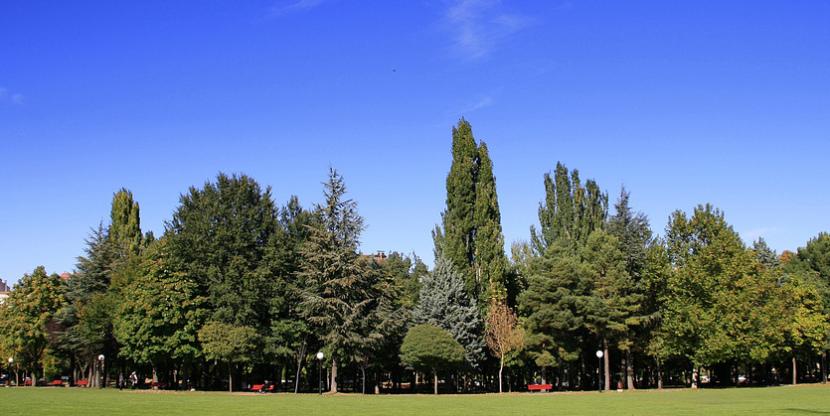 Parque en Soria